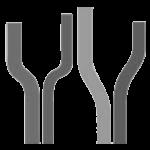 icono_logo_envaser